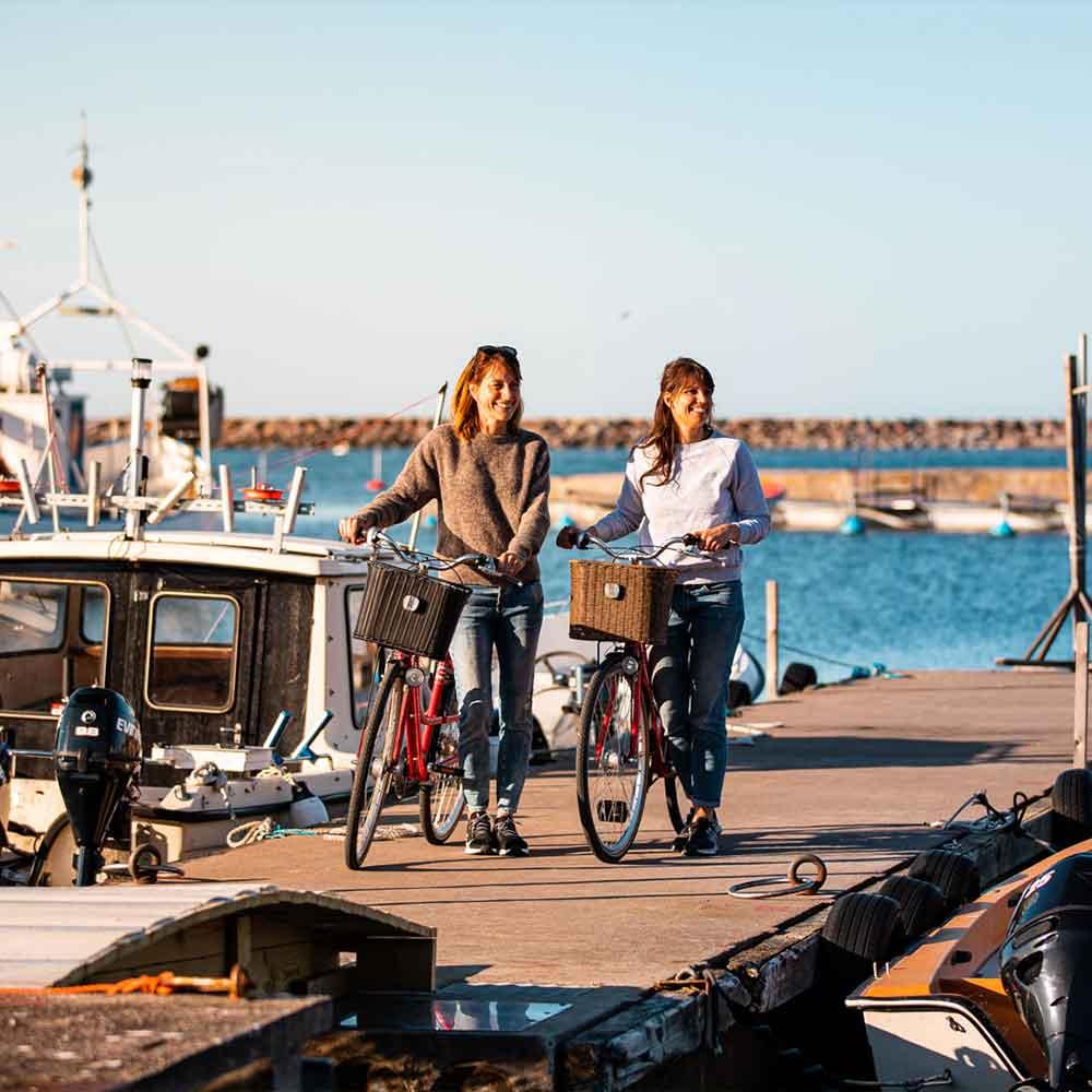 Två kvinnor cyklar på norra Gotland
