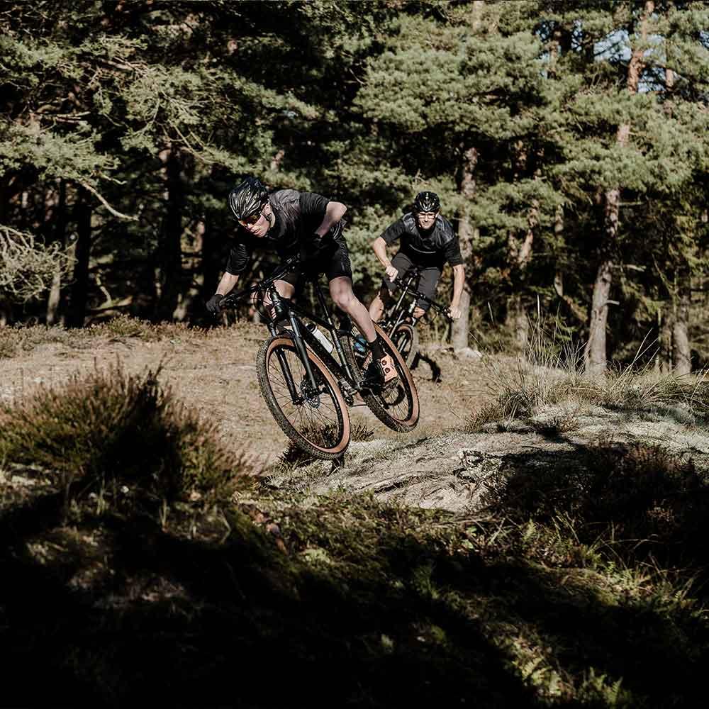 Gruppresa mountainbike på Gotland