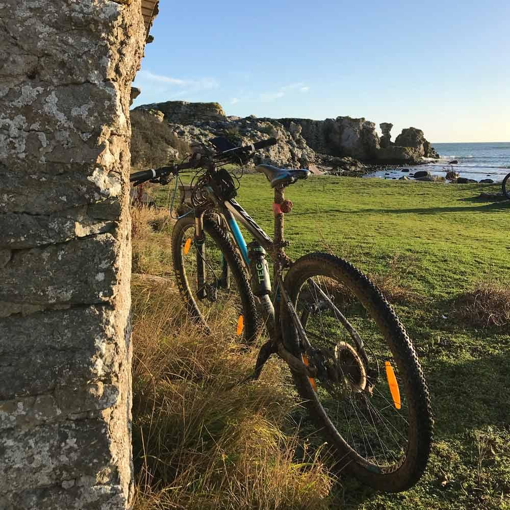Mountainbike på Gotland