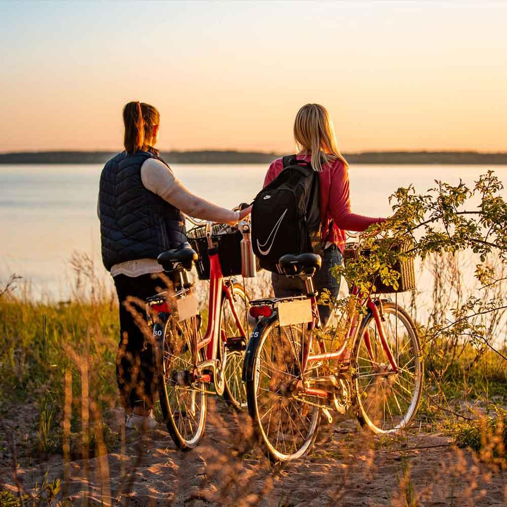 Cykla på södra Öland med vännerna