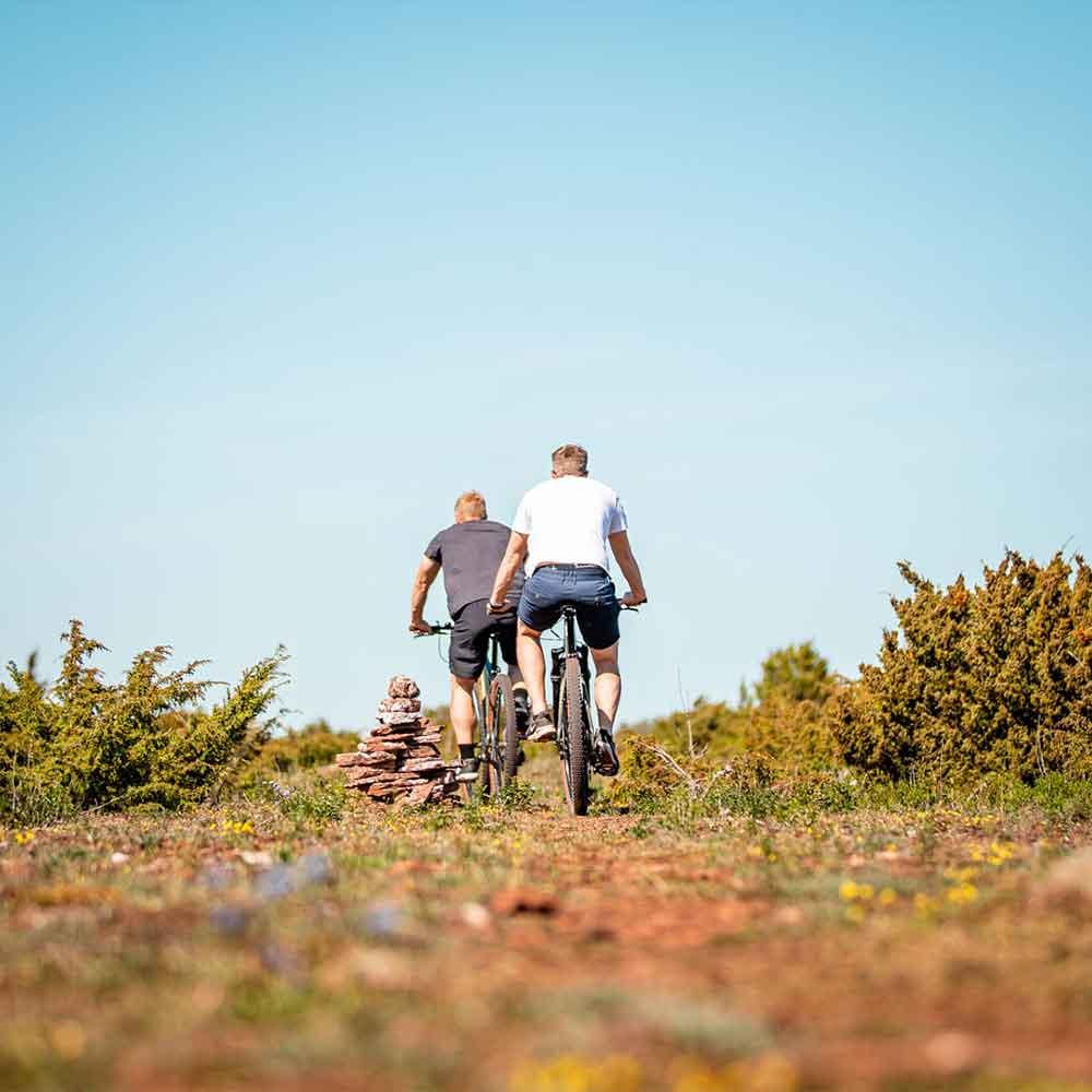 Cykla på södra öland med mountainbike