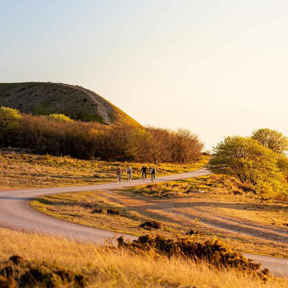 Cykelresor i Sverige på Gotland och Öland